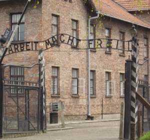 auschwitz mengle experiments